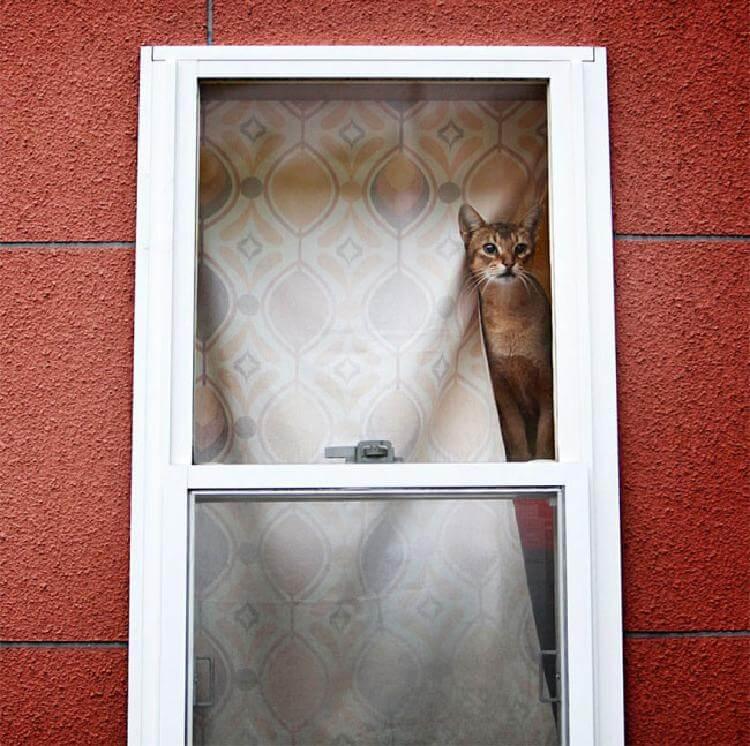 Главное, чтобы дома кто-то ждал